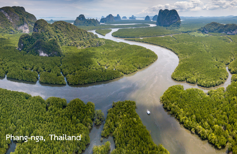 เอเชียตะวันออกเฉียงใต้ (Southeast Asia)