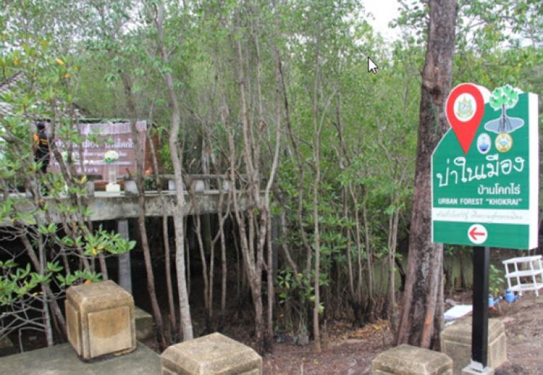 ป่าในเมือง โครงการป่าในเมืองบ้านโคกไร่